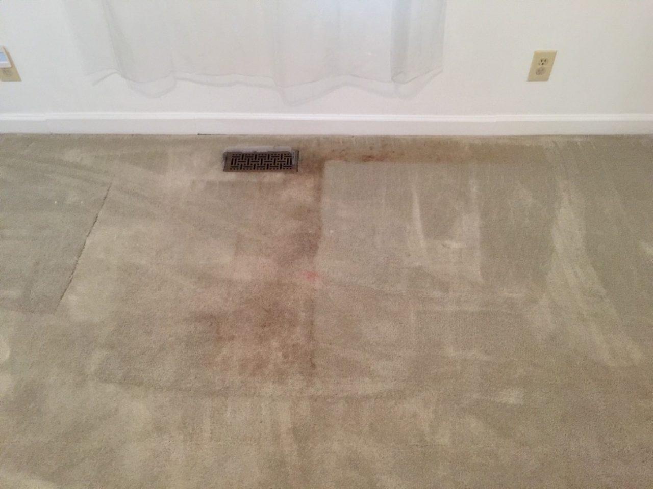 Before Carpet